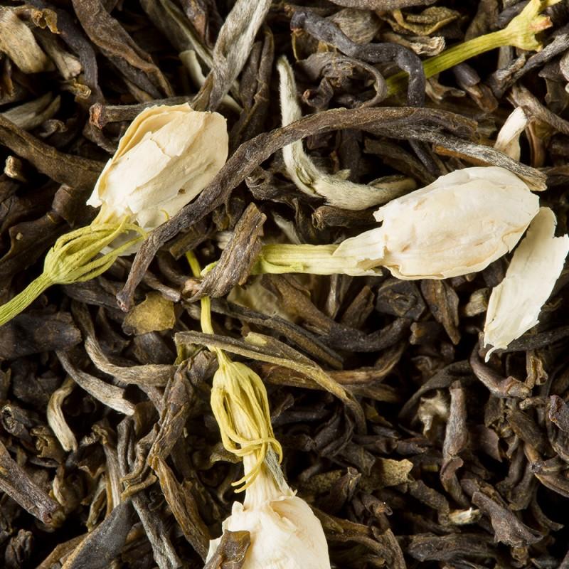 Zeleni čaj Dammann Jasmin