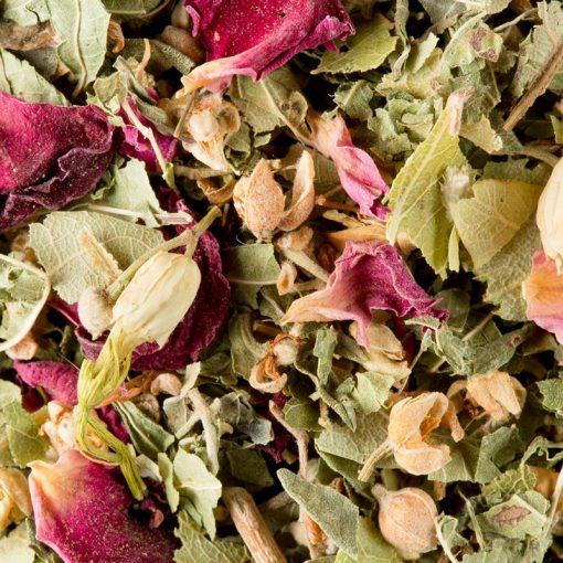 Zeliščni čaj Dammann Tisane Bali